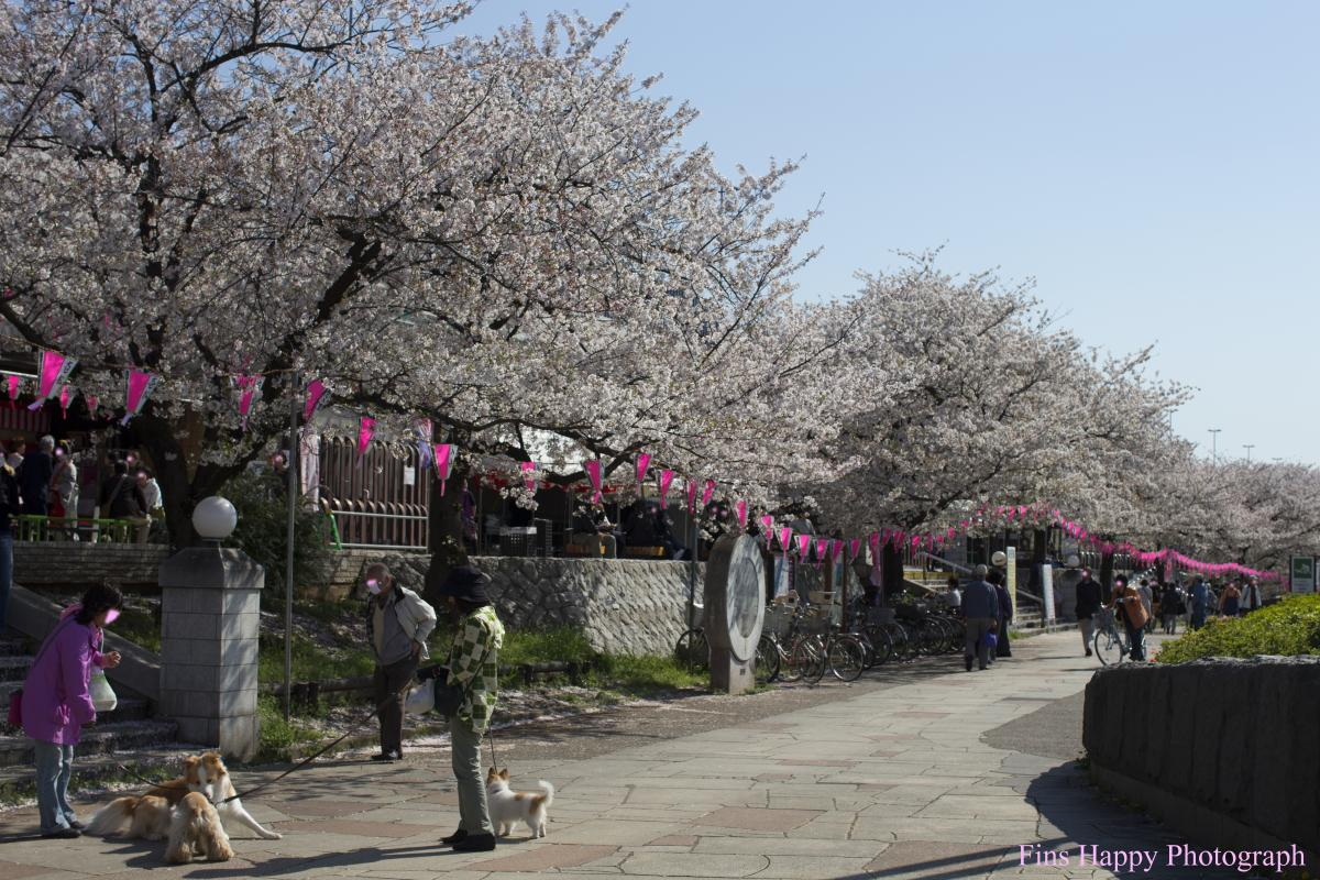隅田川公園 茶屋