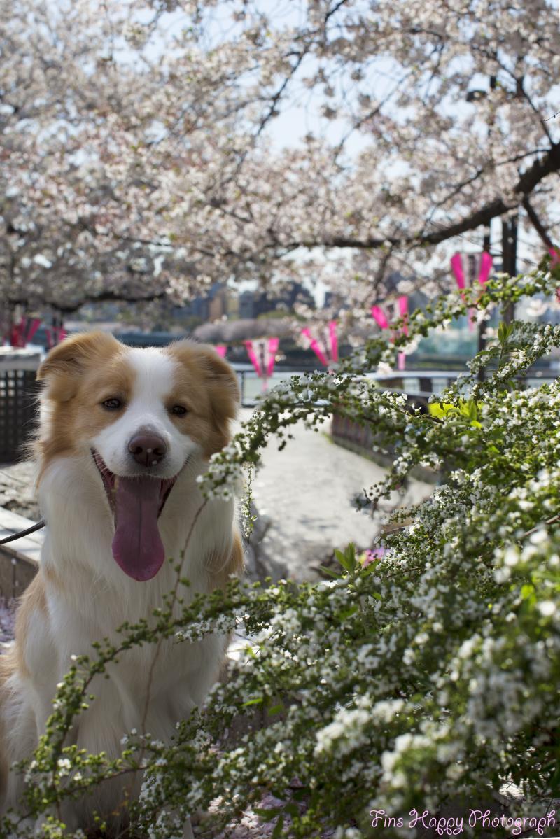 隅田公園で笑顔