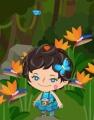 幻の青い蝶、見っけ