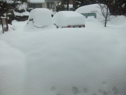 15日朝の玄関先の大雪
