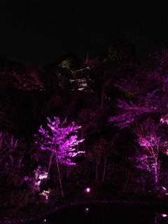三重塔ライトアップ