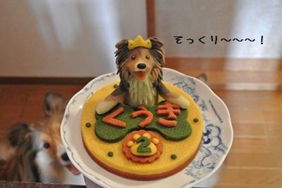 6 16 空姫のケーキだよ