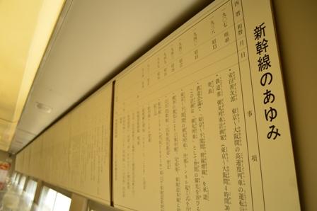 hikari-4.jpg
