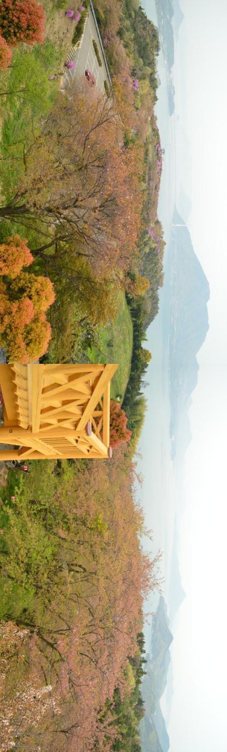 hiraki-pano2.jpg