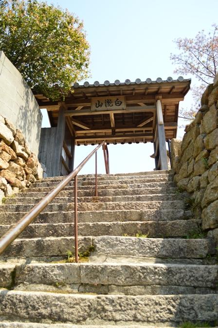 shirataki-6.jpg