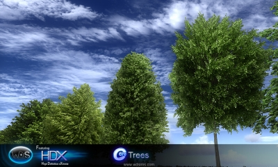 wds trees