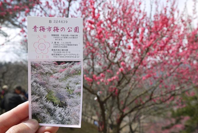 2014_0318戸田別館 0096
