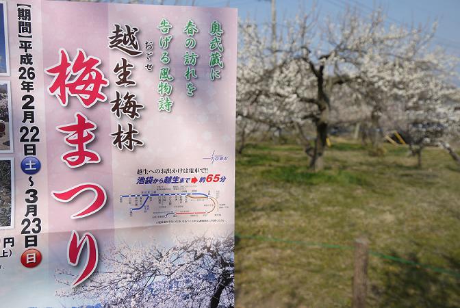 2014_0318戸田別館 0126