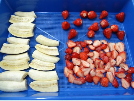 イチゴ乾燥機