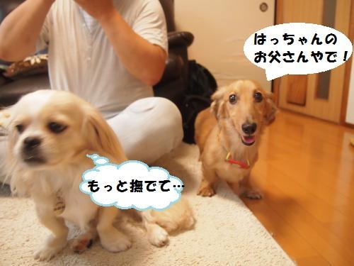004_convert_20140821125839.jpg