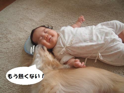 005_convert_20140801141445.jpg