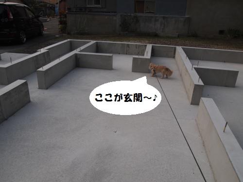 010_convert_20140817135555.jpg