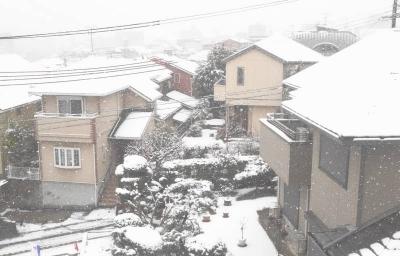 大阪も雪景色