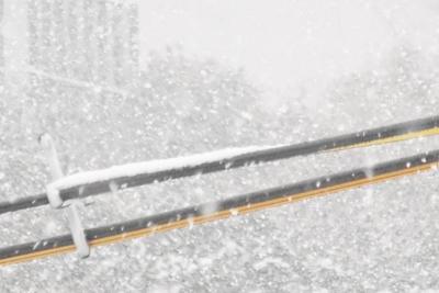 降り続く雪