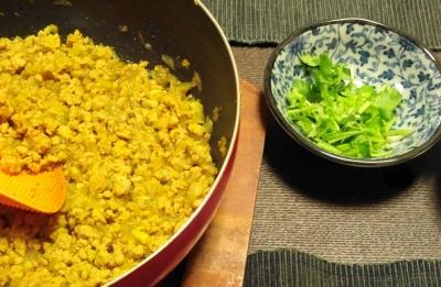 キーマカレー&香菜