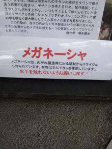 $☆大阪在住時々ネパール☆がねちゃんのヒーリング日記-130730_114028.jpg