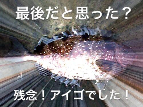 20140401084436a14.jpg