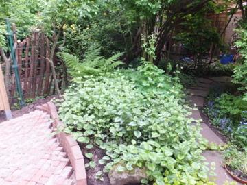 改造前の花壇