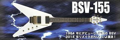 BSV-155-2.jpg