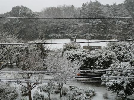 14yuki1.jpg