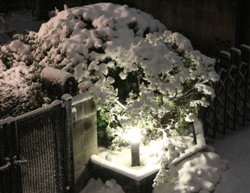 140214雪2