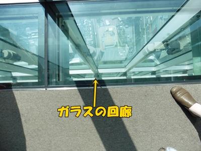 ガラスの回廊