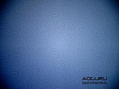 aoguru0714003.jpg