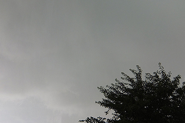 140629s4.jpg