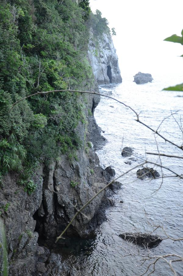 海食洞が多い タライ岬へ続く