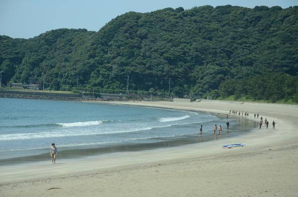 白っぽい軽石 透明な石英  貝殻などの破片を含む砂浜です