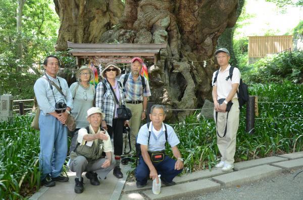 大島自然愛好会の弓ヶ浜 青野川 マングローブ観賞の旅でした 島外からもう1人 撮影者のチョモを入れて 計9名 来年は奥多摩の巨樹めぐり