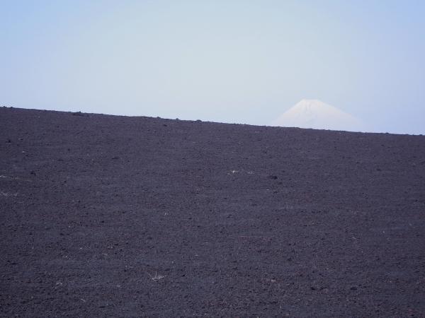 今日は横山大観ふうの富士