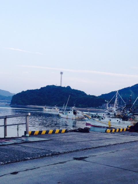 iwasaka.jpg