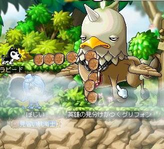Maple140426_004817.jpg