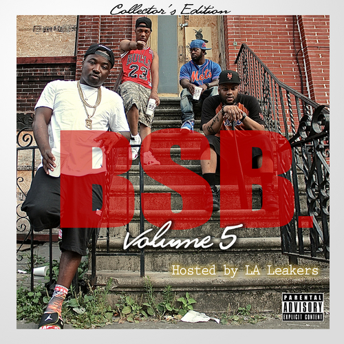 Troy_Ave_Presents_Bsb_Vol_5-front-large.jpg