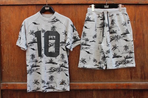 growaround_10deep_palmtree_setup_gry1.jpg