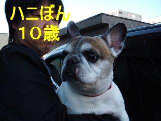 2012_1014papi0004c.jpg