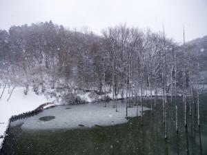 雪景色 B