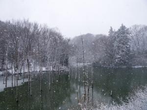 雪景色 C