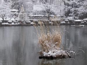 雪景色 J