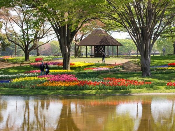 昭和記念公園 A
