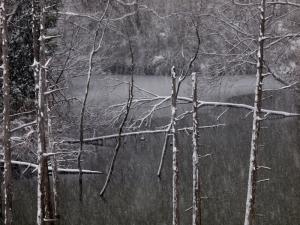 雪景色 E