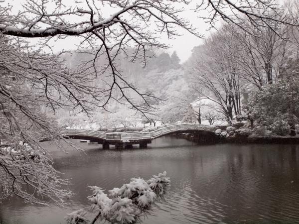雪景色 G