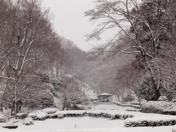 雪景色 N