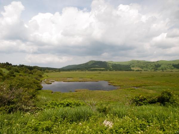 八島ヶ原湿原 A