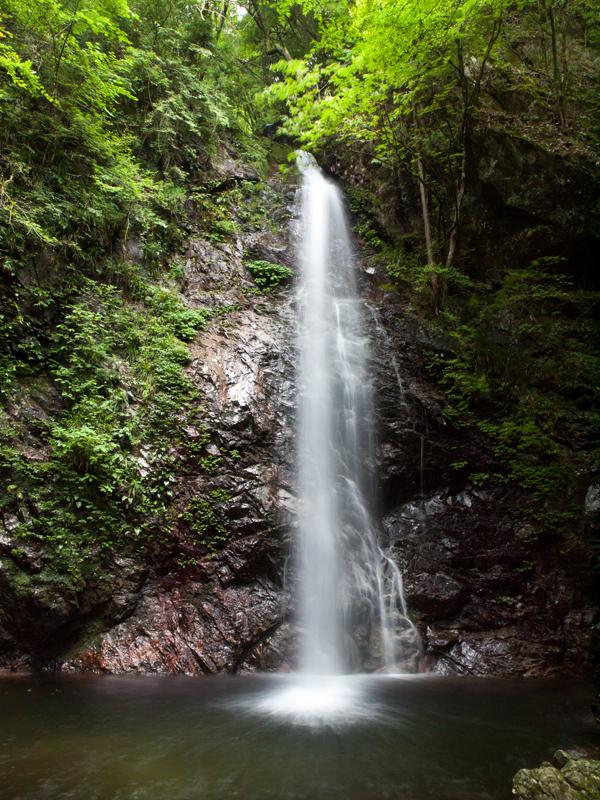 桧原村 払沢の滝 D