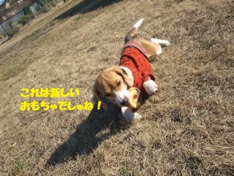 005_convert_20140303035255.jpg