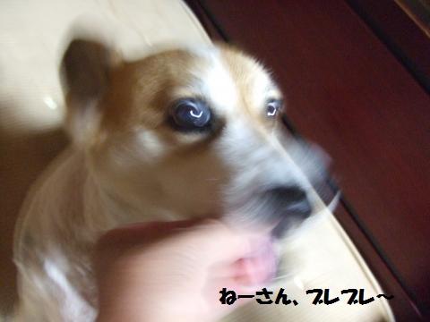 007_convert_20140718054013.jpg