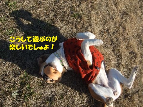 009_convert_20140303035422.jpg