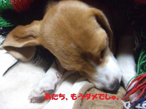 009_convert_20140305054331.jpg
